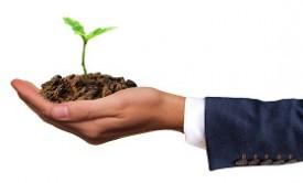 Comment être plus écolo en entreprise ?
